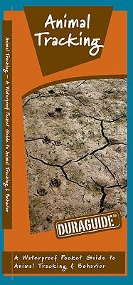 Animal Tracking By Kavanagh, James/ Leung, Raymond (ILT)